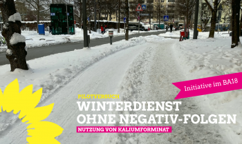 Winterdienst ohne Negativ-Folgen
